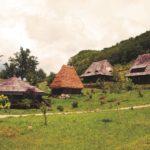 Raven's Nest - Romanian Romance