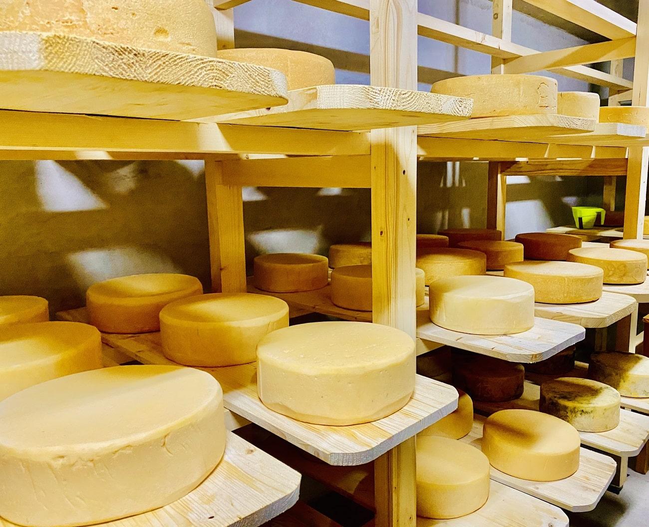 Mesendorf Cheese